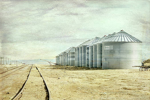 The Grain Bins at Taber by Ramona Murdock