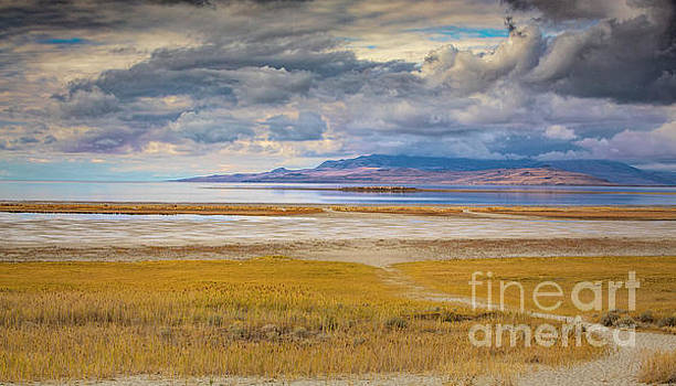 The Great Salt Lake by Randy Kostichka