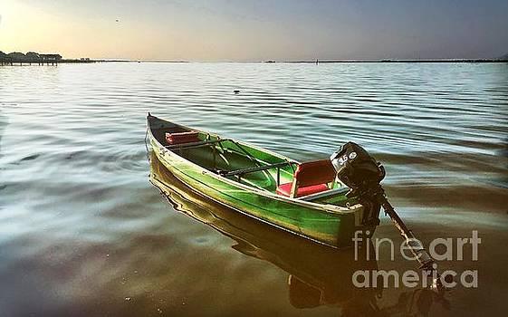 The Green Boat by Eddy Mann