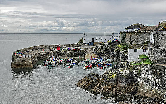 Andrew Wilson - The Harbour At Coverack