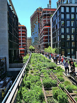 The Highline - N Y C by Allen Beatty