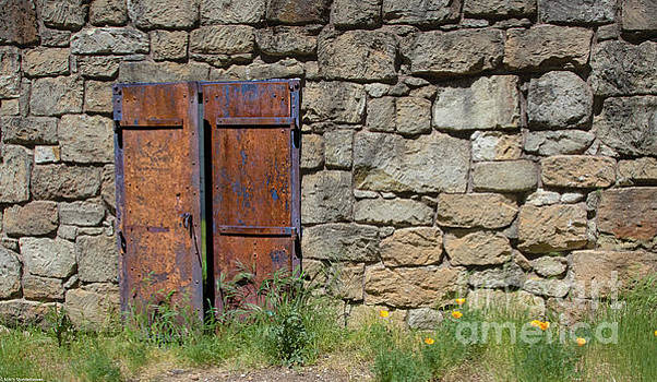 The Iron Door by Mitch Shindelbower