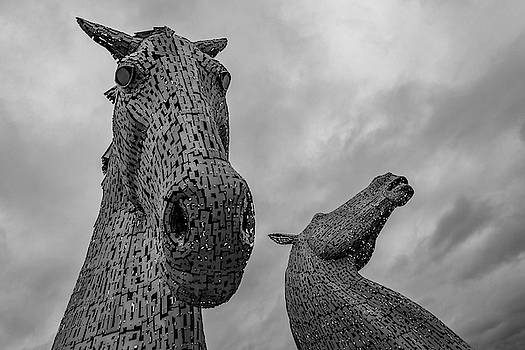 The Kelpies by Holly Ross