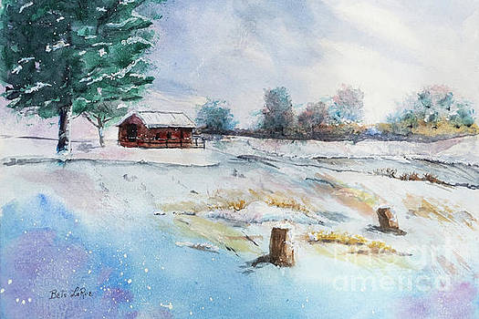 The Last Snowfall by Betty LaRue