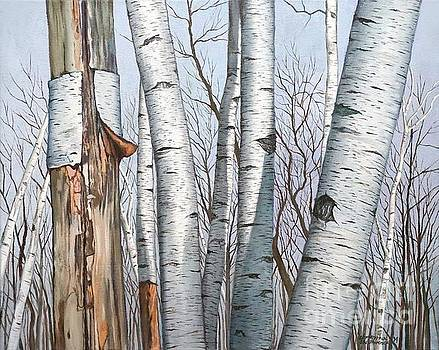 Christopher Shellhammer - The Life of the Wild Birch Trees
