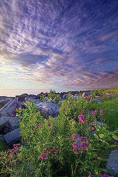 The Light That Brings You Home by Phil Koch