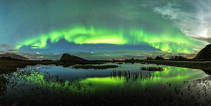 The little pond by Frank Olsen