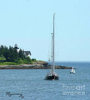 The Little Sailboat That Could by Mariarosa Rockefeller
