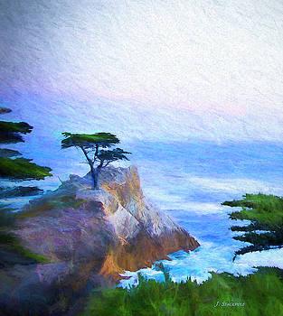 The Lone Cypress - Pebble Beach by Jennifer Stackpole