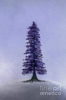 Benjamin Harte - The Lone Tree