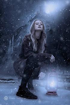 The Midnight Express by Jeremy Martinson
