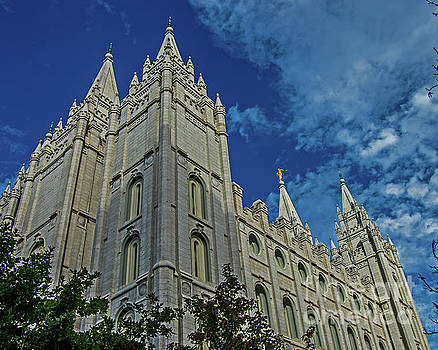 The Mormon Temple by Stephen Whalen