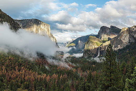 The Mountain, the Valley and the Fog... by Kevin Evans