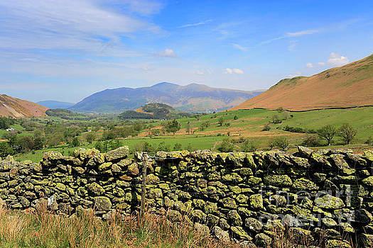 The Newlands valley, Lake District National Park by Dave Porter