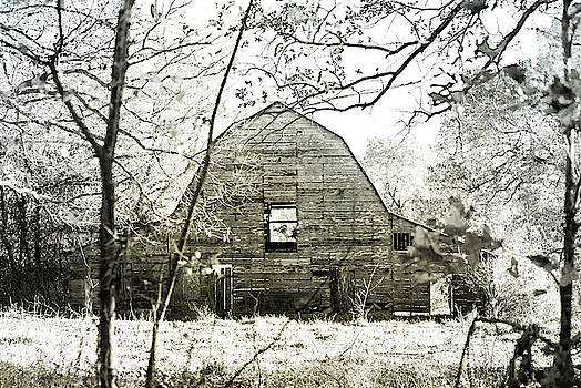 The Old Barn by Annette Persinger