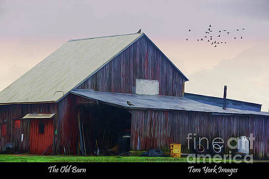 The Old Barn by Tom York Images