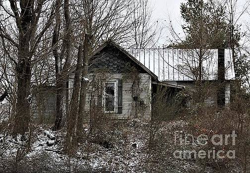 The Old Home Place by Tammie J Jordan