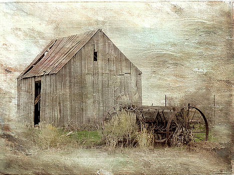 The Old Shed by Ramona Murdock