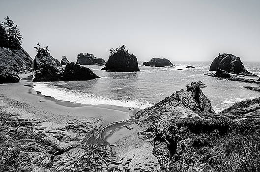 Margaret Pitcher - The Oregon Coast in Black and White