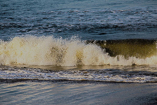 The Outer Banks 6 by David Stasiak