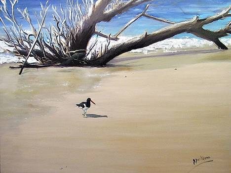 The Oyster Catcher by Jeanine Jacildone