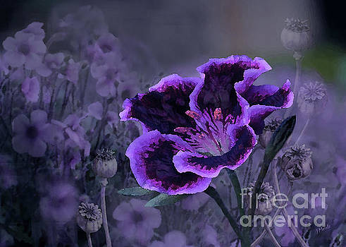 The Passion of Purple by J Marielle