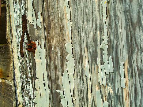 The Peeling Wall by Tom Gresham
