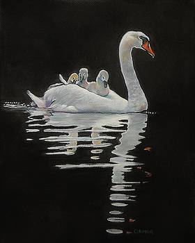 The Pen and The Cygnets by Jean Cormier