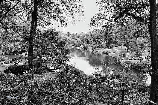 The Pond bw by Paulette B Wright