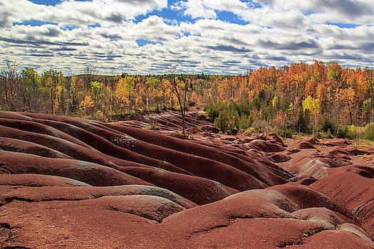 Gary Hall - The Red Hills of Caledon