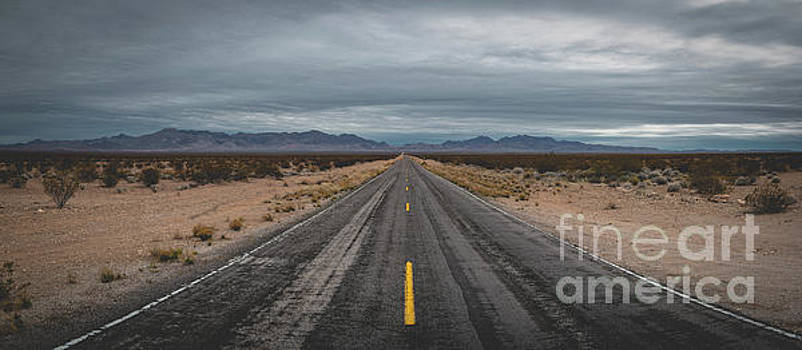 The Road  by Michael Ver Sprill