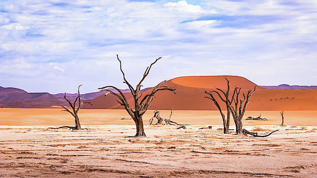 The Sands of Time by Hamish Mitchell