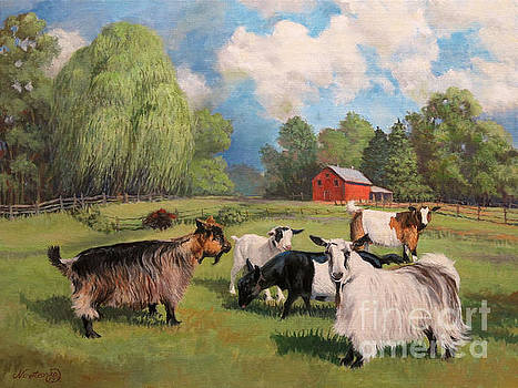 The Scape Goats by Jeanne Newton Schoborg