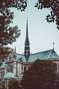The Spire - Cathedral of Notre Dame Paris France by Harmeet Gabha