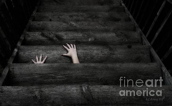 The Stairs by Denise Irving