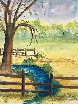 The Stream by Marita McVeigh