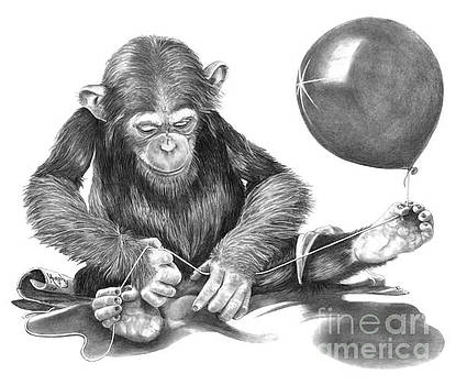 The String Theory by Murphy Elliott