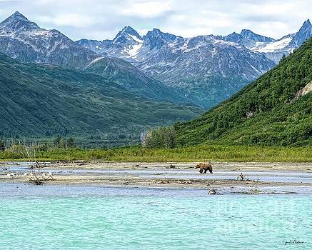 The Stunning Beauty of Lake Clark National Park by Jan Mulherin
