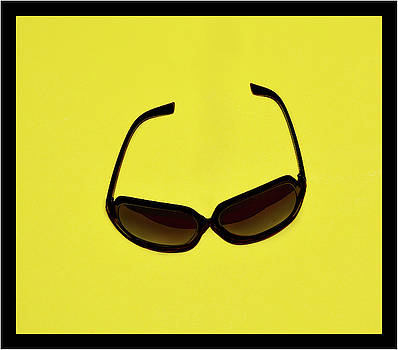 The Sunglasses by Constance Lowery