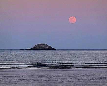Toby McGuire - The Super Worm Moon 2019 over Egg Rock in Nahant MA