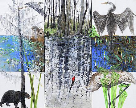 The Swamp by Trena McNabb