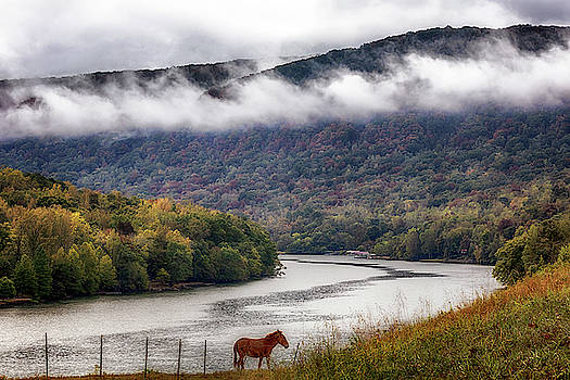 Susan Rissi Tregoning - The Tennessee River Gorge