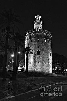 The Tower of Gold in Monochrome, Seville by Angelo DeVal