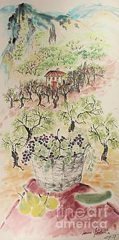 Nadja Van Ghelue - The Valley of Innocence and Generosity, The Pristine Vineyards of Mas Plantadeta