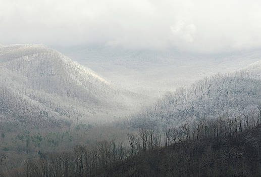 The Valleys of Mount LeConte by Donna Collins