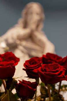 The Virgin with Roses by Christine Buckley