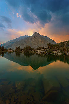 The Watcher by Brian Knott Photography