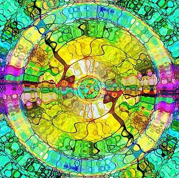The Wheel of Happiness by Tara Turner