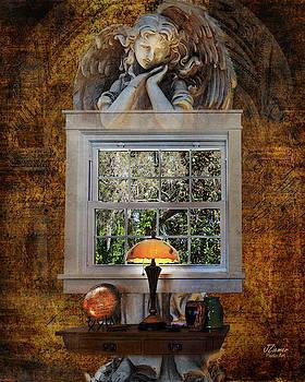 The Window by Jim Ziemer