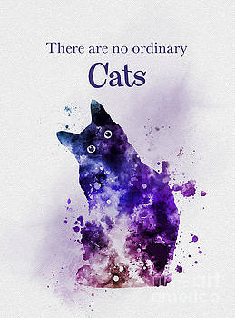 There are no ordinary cats by My Inspiration